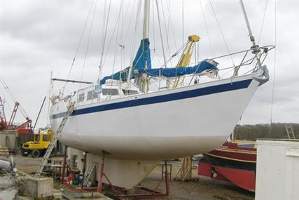Bruce Roberts 43 for sale in United Kingdom for £39,995