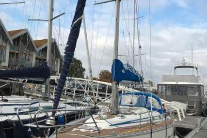 Bavaria Yachts 350 for sale in United Kingdom for £32,500
