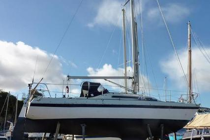 Nicholson 30 for sale in United Kingdom for £9,650