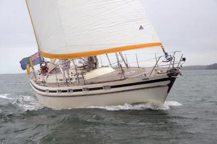 Contest 41 for sale in United Kingdom for £69,500