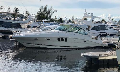 Image of Sea Ray 48 Sundancer for sale in United States of America for $399,000 (£320,353) Fort Lauderdale, FL, United States of America