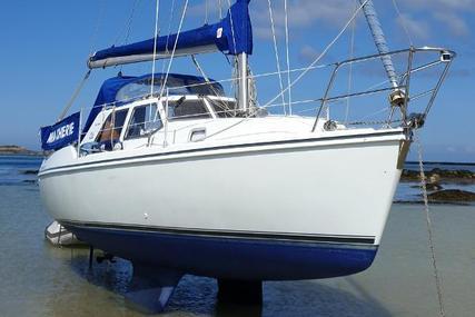 Hunter Pilot 27 for sale in Guernsey and Alderney for £23,500