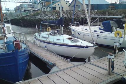Nicholson 31 for sale in Ireland for £26,500
