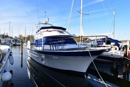 Trader 41 + 2 for sale in United Kingdom for £64,995