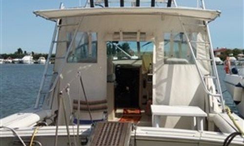 Image of Boston Whaler 31 Express for sale in Italy for €43,000 (£38,726) chioggia, Adriatic Sea, Italy