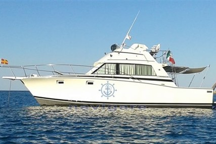 Bertram 38' Sport fish MK 3 for sale in Italy for €150,000 (£136,988)
