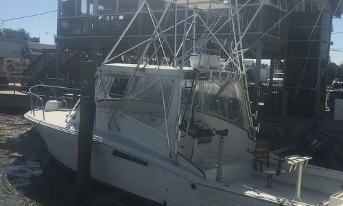 Image of Bruiel Express Sportfish 36' for sale in United States of America for $14,900 (£11,181) Marathon, Florida, United States of America