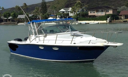 Image of Pursuit 2650 for sale in United States of America for $40,600 (£31,433) Honolulu, Hawaii, United States of America