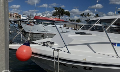 Image of Sea Hawk Marine 36 for sale in United States of America for $210,000 (£147,853) Naples, Florida, United States of America
