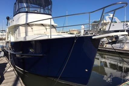 Beneteau Swift Trawler 42 for sale in United States of America for $249,000 (£202,893)