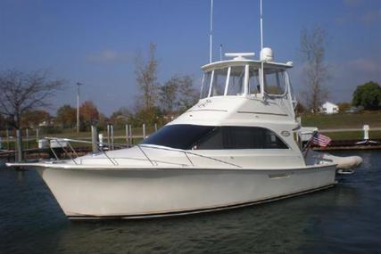 Ocean Yachts 35 Super Sport for sale in United States of America for $69,900 (£55,992)