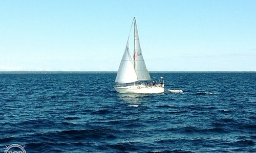 Image of Catalina 34 for sale in United States of America for $39,900 (£31,034) Oconto, Wisconsin, United States of America