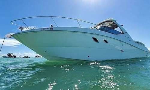 Image of Sea Ray 310 Sundancer for sale in United States of America for $117,000 (£93,720) Miami, Florida, United States of America