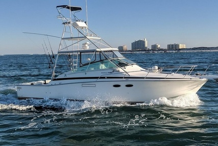 Bertram 38 Special for sale in United States of America for $55,600 (£43,625)