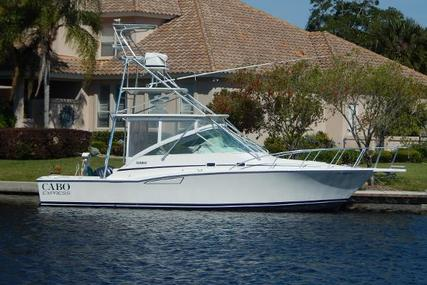 CABO 35 Express for sale in United States of America for $124,900 (£99,807)