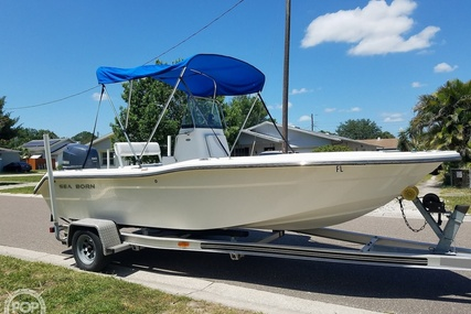 Sea Born NX19 for sale in United States of America for 20 750 $ (16 586 £)