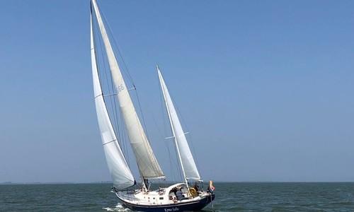 Image of Ted Hood 50 for sale in Netherlands for €99,500 (£89,447) Prins van Oranje, De Stienplaat 1, 8754 HE Makkum, Netherlands