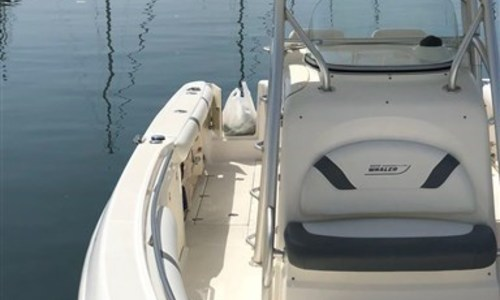 Image of Boston Whaler 320 Outrage for sale in Italy for €125,000 (£112,976) Campania, Italy