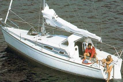 Dehler 25 CR for sale in Netherlands for €18,000 (£16,385)