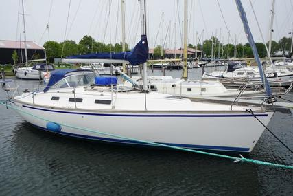 Event 34 for sale in Netherlands for €59,500 (£53,885)