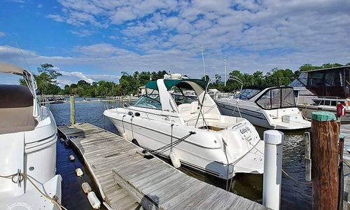 Image of Sea Ray 310 Sundancer for sale in United States of America for $51,200 (£39,090) Edgewood, Maryland, United States of America