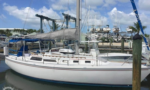 Image of Catalina 34 for sale in United States of America for $44,500 (£31,957) Marathon, Florida, United States of America