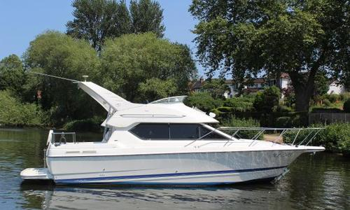 Image of Bayliner 288 Classic for sale in United Kingdom for £39,950 Walton-on-Thames, United Kingdom