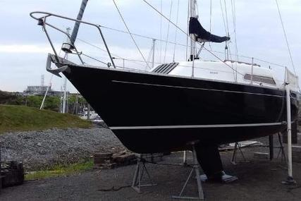 FOXHOUND 24 for sale in Guernsey and Alderney for £5,000