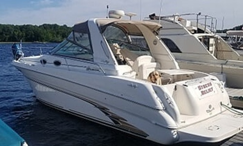 Image of Sea Ray 290 Sundancer for sale in United States of America for $37,800 (£26,728) Vassalboro, Maine, United States of America