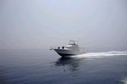 Sea Ray Amberjack 31 for sale in Greece for €75,000 (£67,142)
