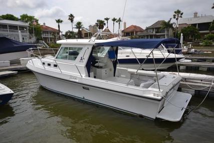 Albin 28 Tournament Express for sale in United States of America for $78,999 (£60,115)