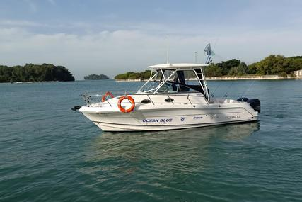 Robalo R305 for sale in Singapore for $161,900 (£129,136)