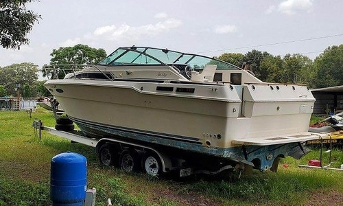 Image of Sea Ray 290 Sundancer for sale in United States of America for $19,750 (£15,050) Ocala, Florida, United States of America