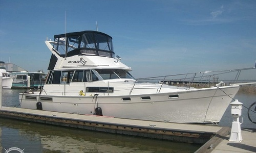 Image of Bayliner 3888 for sale in United States of America for $58,000 (£44,197) Pittsburg, California, United States of America