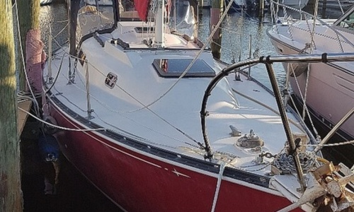 Image of C & C Yachts 30 for sale in United States of America for $14,900 (£10,528) Cape Coral, Florida, United States of America