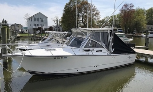 Image of Albemarle 265 Express Fisherman for sale in United States of America for $45,500 (£34,672) Bowleys Quarters, Maryland, United States of America