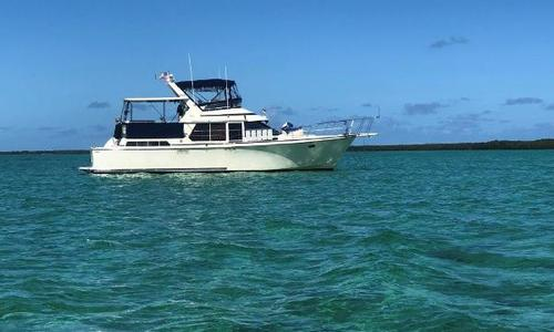 Image of Tollycraft 44 for sale in United States of America for $89,000 (£68,628) Islamorada, FL, United States of America
