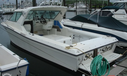 Image of Sportcraft 252 for sale in United States of America for $25,000 (£19,278) Cape May, New Jersey, United States of America