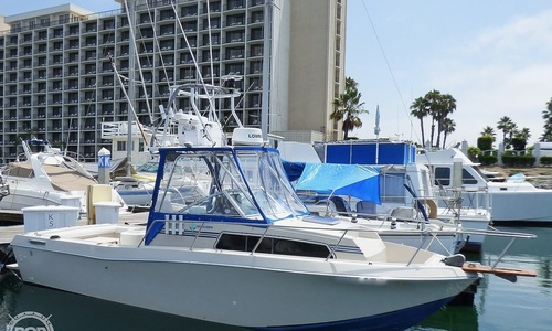 Image of Chris-Craft 254 Scorpion for sale in United States of America for $33,500 (£26,285) San Diego, California, United States of America