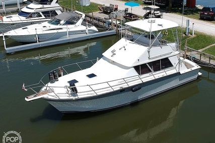 Silverton 40 Convertible for sale in United States of America for $46,000 (£33,034)