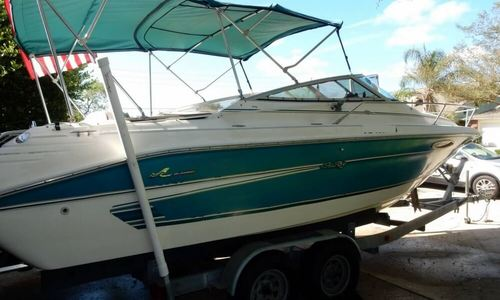 Image of Sea Ray 240 Overnighter for sale in United States of America for $14,500 (£11,181) Apollo Beach, Florida, United States of America