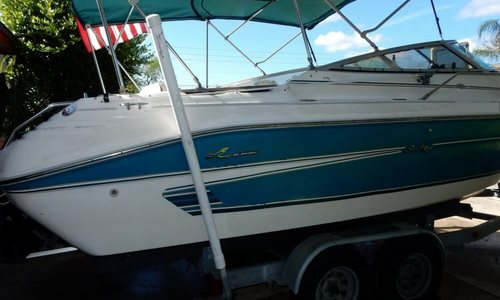 Image of Sea Ray 240 Overnighter for sale in United States of America for $12,500 (£8,839) Apollo Beach, Florida, United States of America