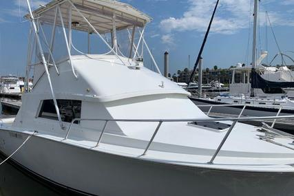 Bertram 33 Sport Fisherman for sale in United States of America for $49,900 (£37,444)