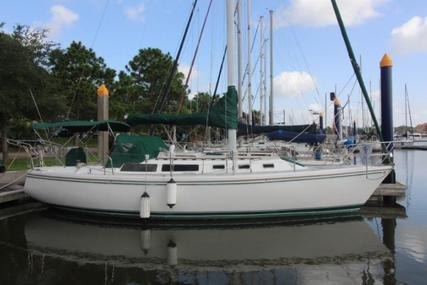 Catalina 34 for sale in United States of America for $34,995 (£26,667)