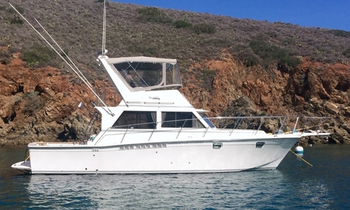 Image of Uniflite 38 Convertible for sale in United States of America for $79,600 (£57,541) United States of America