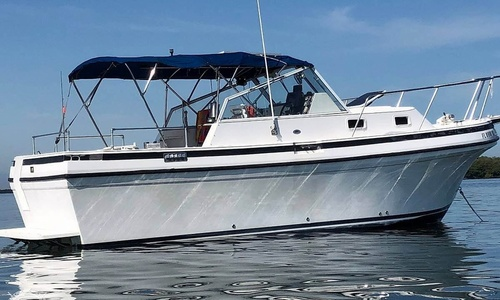 Image of Albin Tournament Express 26 for sale in United States of America for $61,000 (£43,618) Palmetto, Florida, United States of America