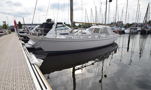 Image of Trintella 3 for sale in Netherlands for €29,950 (£27,354) Huizen, Ambachtsweg 59, Netherlands