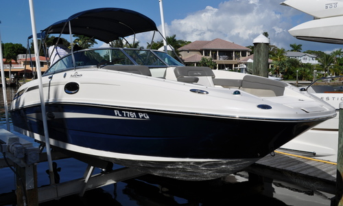 Image of Sea Ray 260 Sundeck for sale in United States of America for $42,500 (£33,346) Sarasota, Florida, United States of America