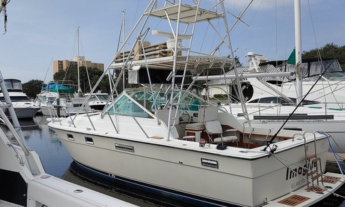 Image of Tiara 3100 Open for sale in United States of America for $18,000 (£13,100) Daytona Beach, Florida, United States of America