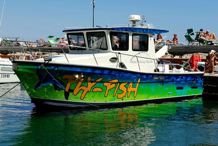TRIPESCE 29 for sale in Italy for €84,000 (£76,635)